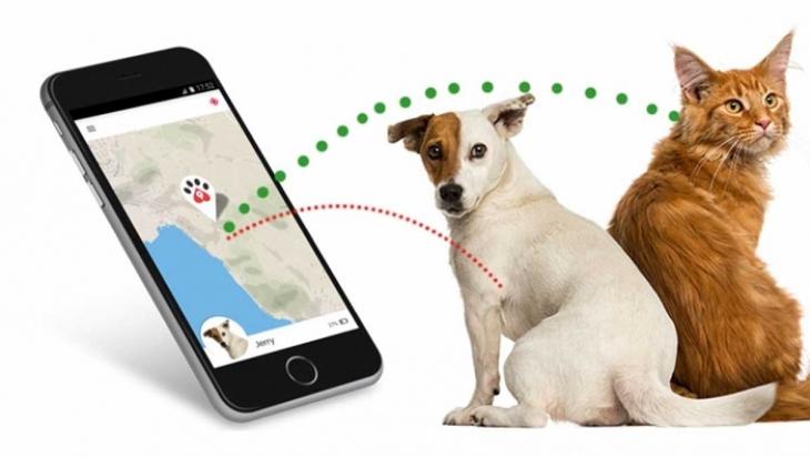 Pet Tracking